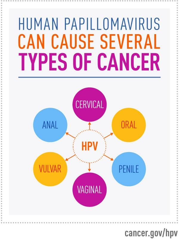 HPV & the HPV Vaccine